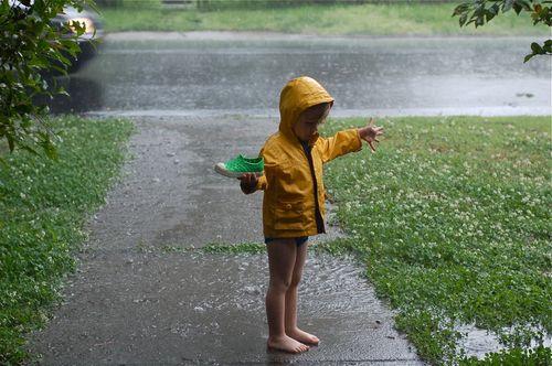 Felix_raindance
